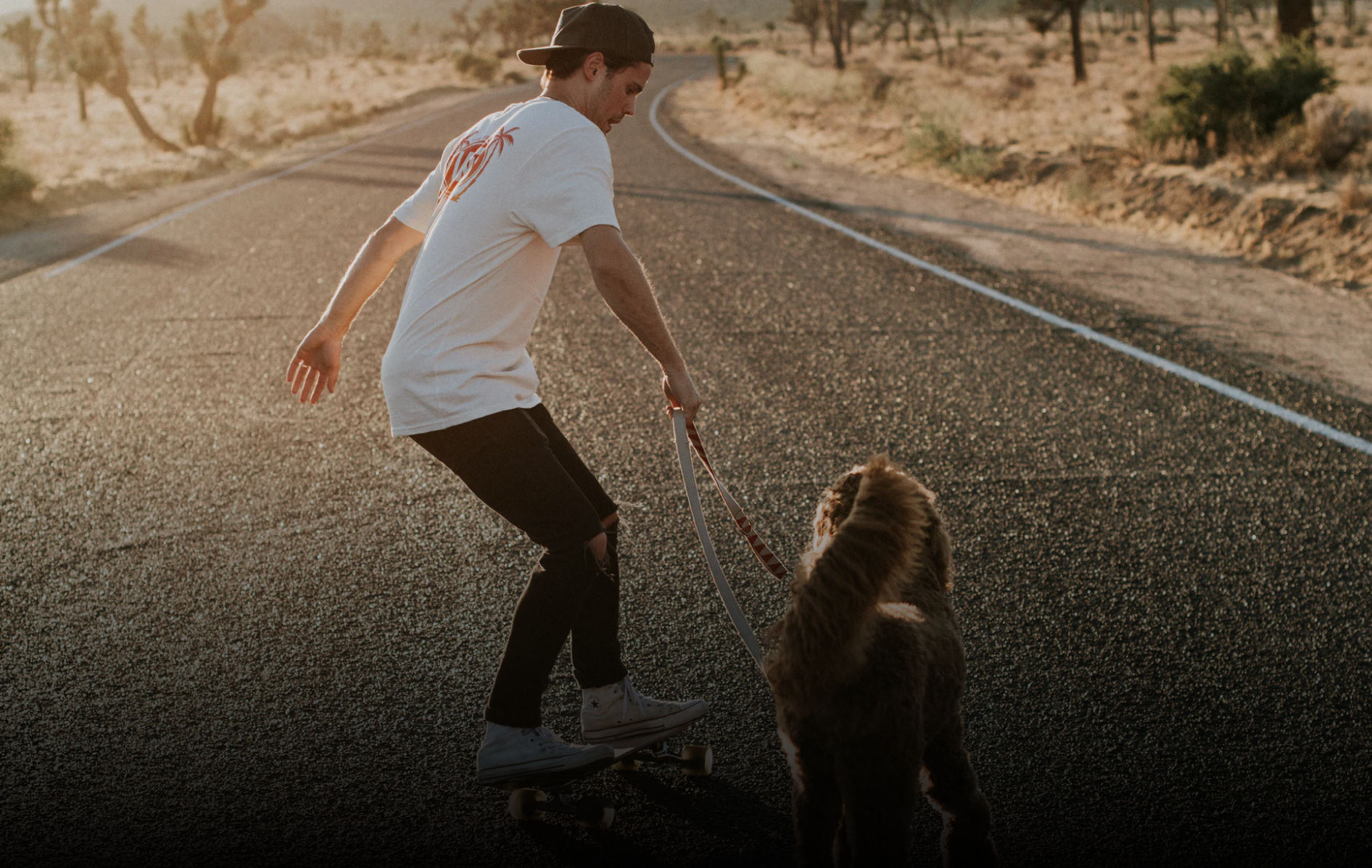 Man skateboarding with dog on a desert road